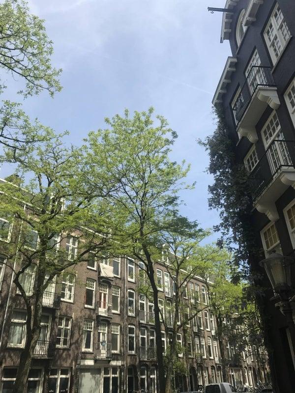 Wilhelminastraat, Amsterdam