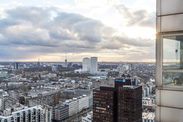 Bulgersteyn, Rotterdam