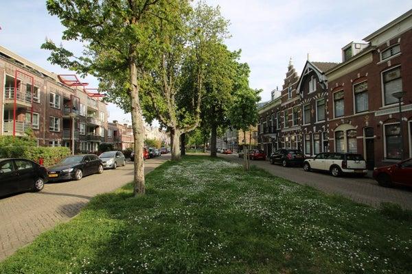 Warande, Schiedam