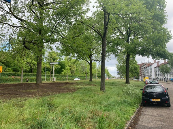 Saenredamstraat, Eindhoven