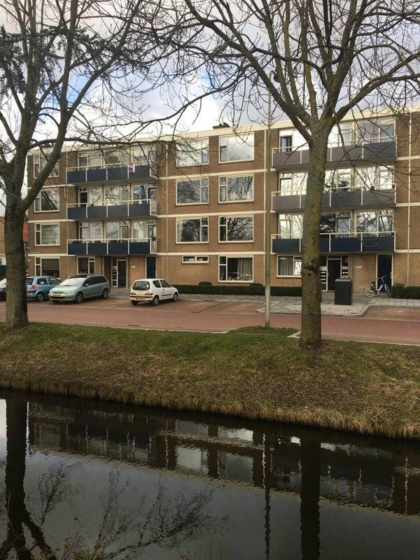 Goudenregenplantsoen, Alphen Aan Den Rijn