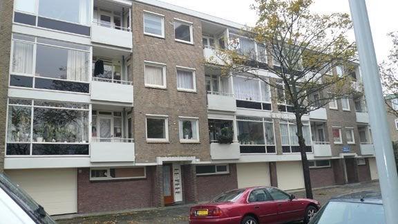 Bichon van IJsselmondelaan