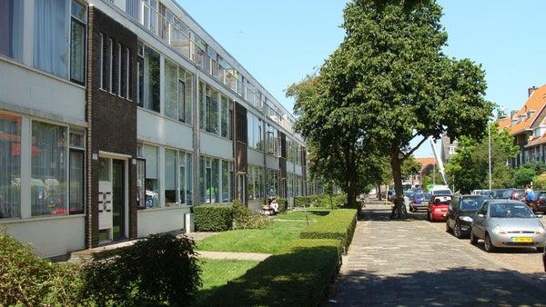 Zonnebloemstraat, Rotterdam